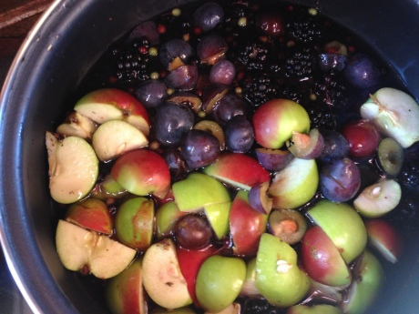 Hedgerow fruits in the pot