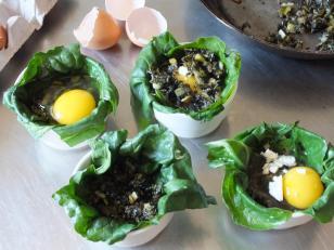 Green Egg Prep 2 DSCF7070